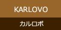 カルロボとは
