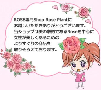 roseplant
